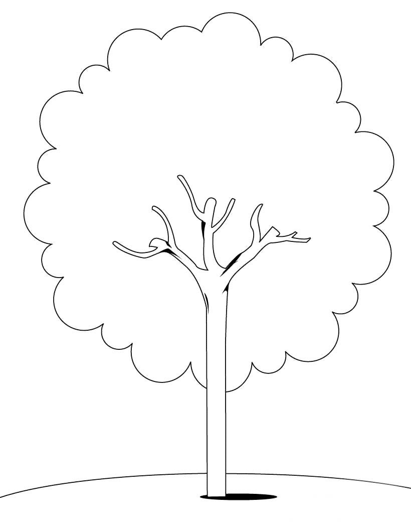 树简笔画_树图片欣赏_树儿童画画作品-有伴网
