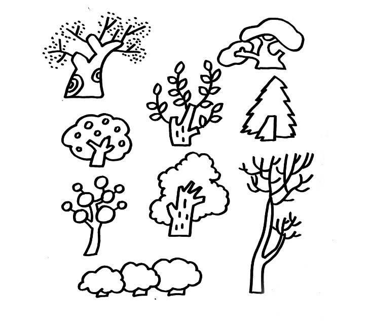 找 大树简笔画