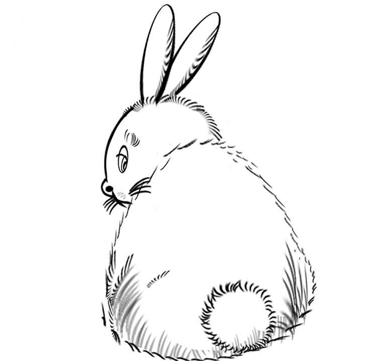 小兔子简笔画头饰图片内容图片展示