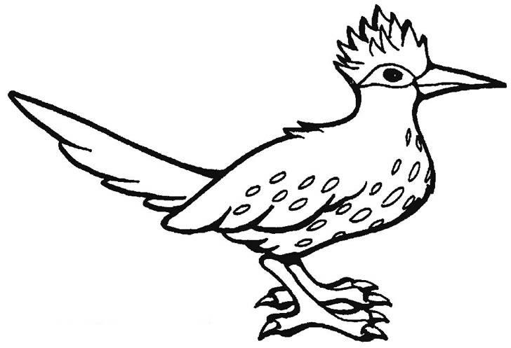 小鸟简笔画 小鸟图片欣赏 小鸟儿童画画作品