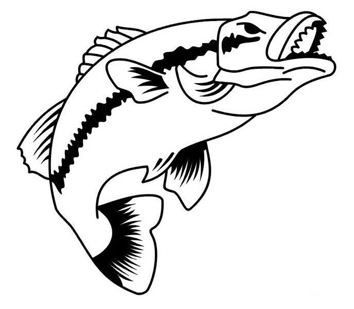鱼的简笔画简笔画_鱼的简笔画图片欣赏