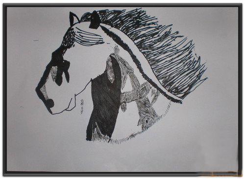 速写-小学生动物系列速写写生