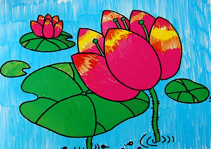 美丽的荷花简笔画 美丽的荷花图片欣赏 美丽的荷花儿童画画作品
