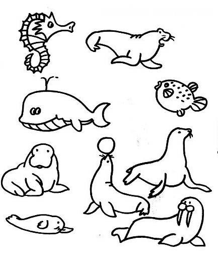 海底动物们在聚会简笔画