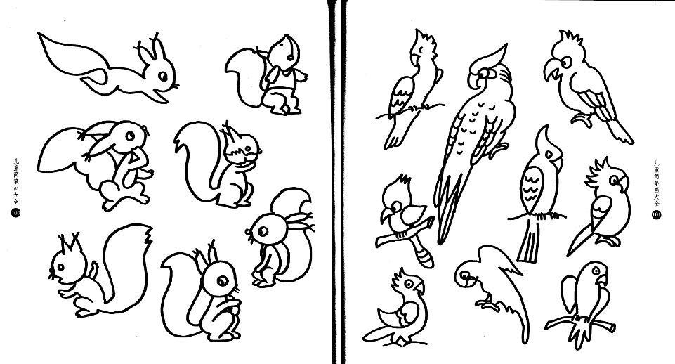 简笔画-鹦鹉和小松鼠