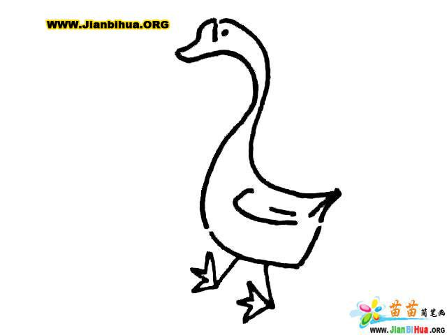简笔画-大白鹅简笔画教程