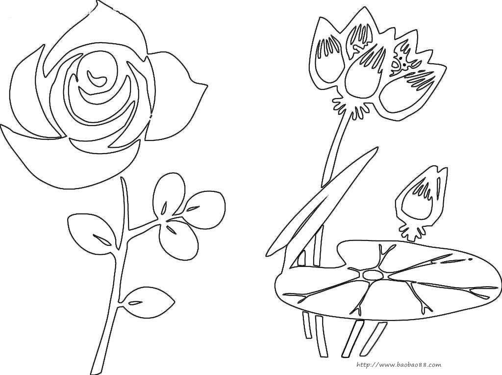 儿童画画 简笔画 玫瑰与荷花儿童画画