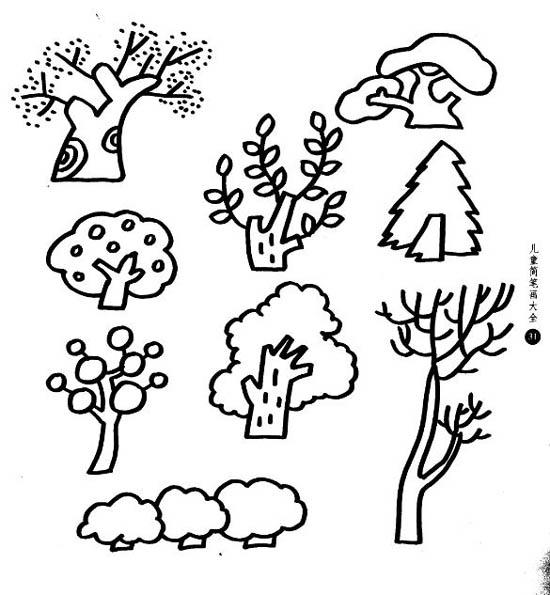 简笔画- 植物简笔画图片-各种树木