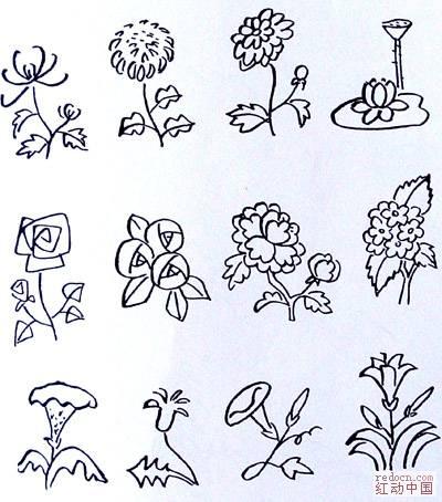 简笔画- 植物简笔画大全-各科植物
