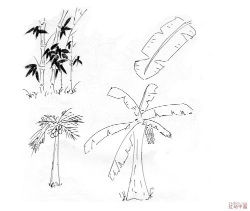 椰子树简笔画 植物简笔画大全