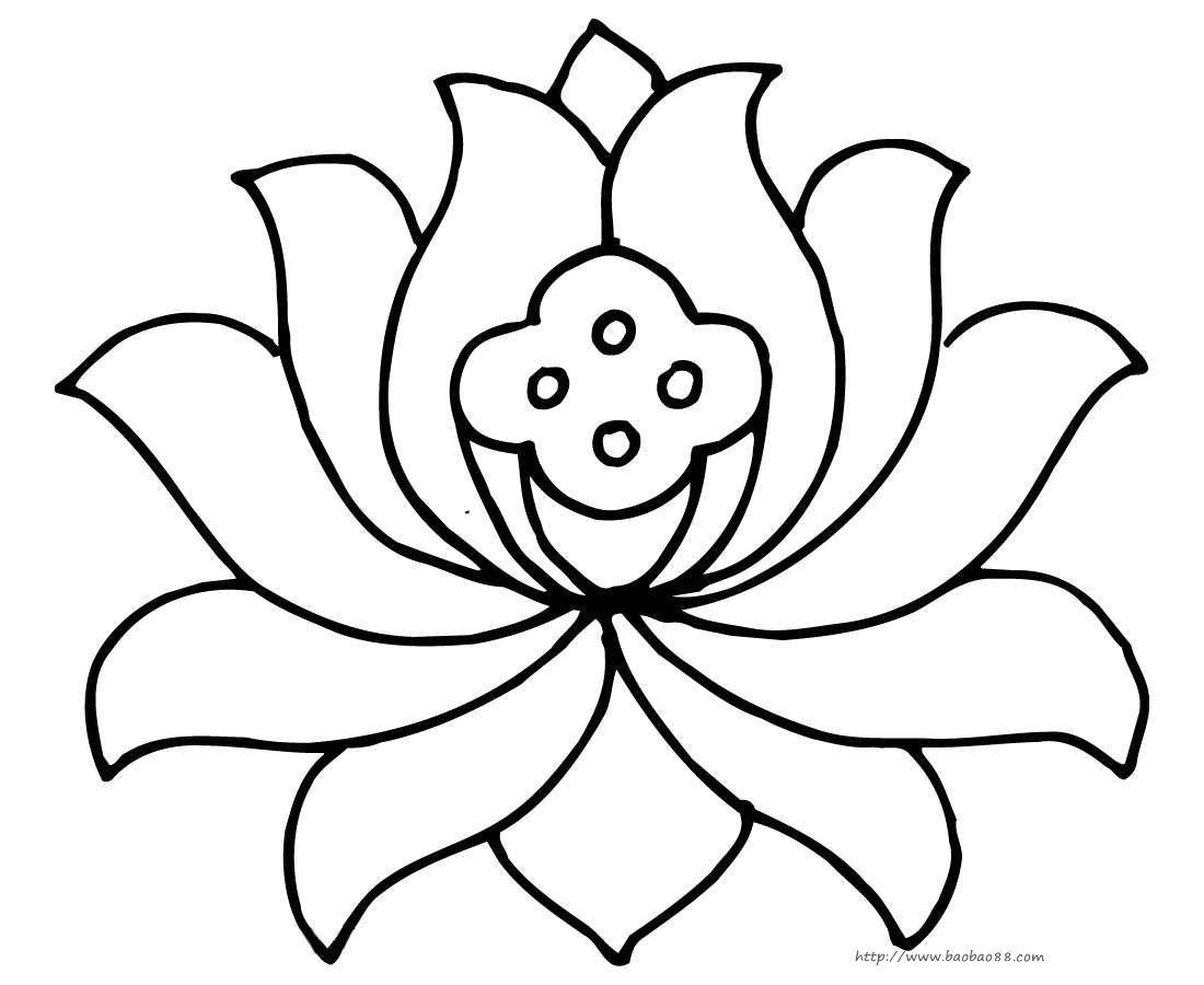 莲花简笔画图片