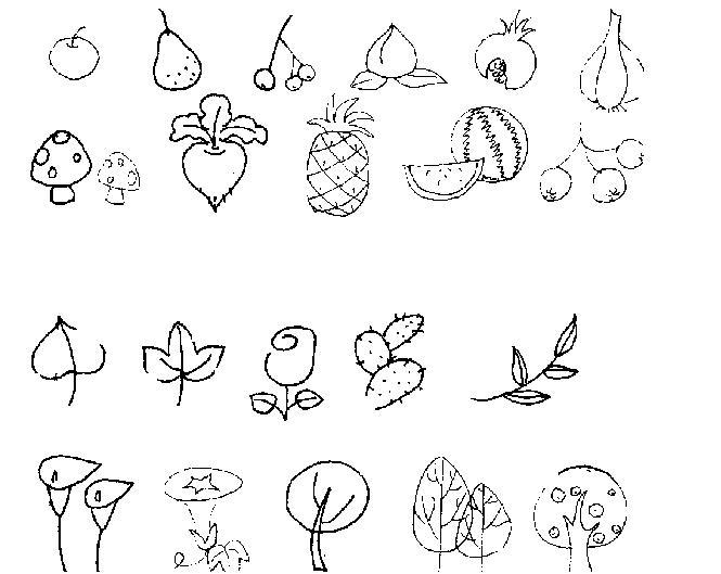 简笔画 教你画各种水果