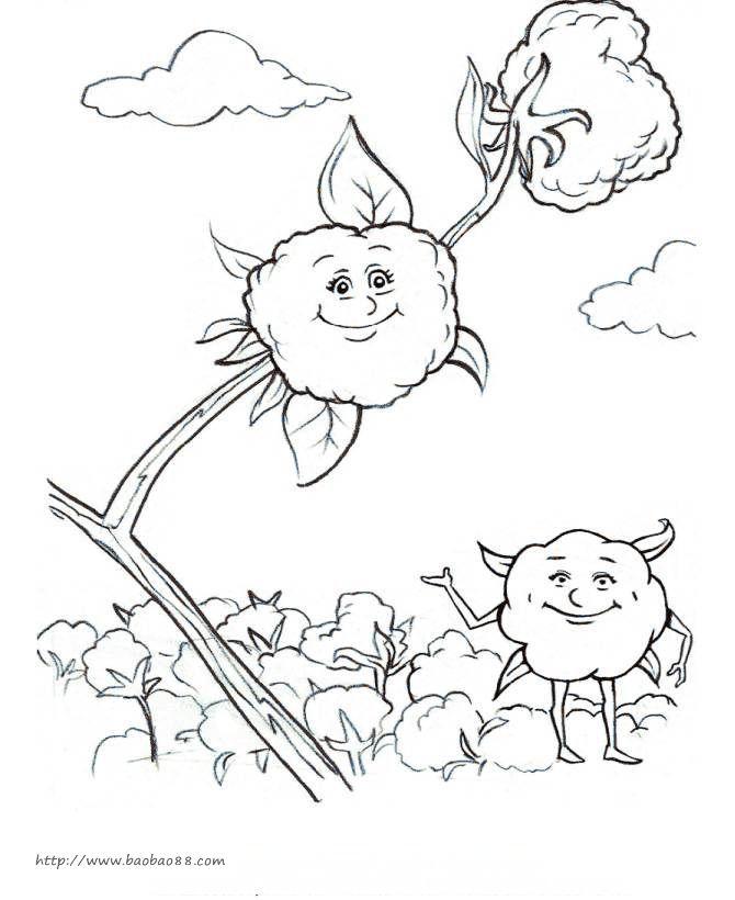 儿童植物简笔画大全 向日的棉花 花朵简笔画