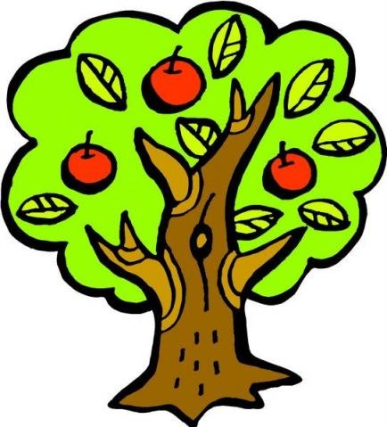 简笔画-植物简笔画-苹果树
