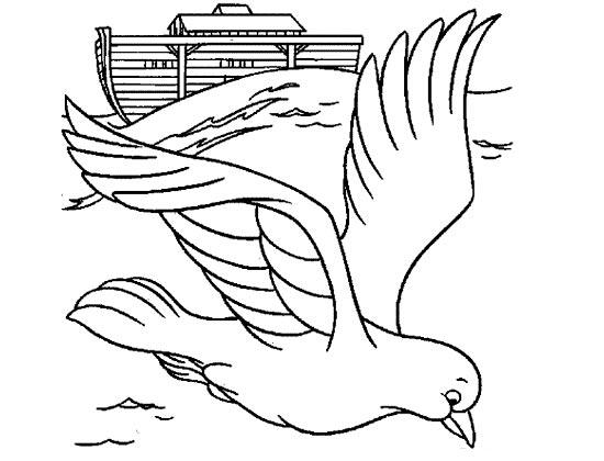 简笔画-海鸥