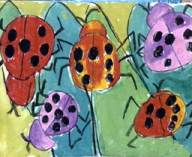 七星瓢虫简笔画_七星瓢虫图片欣赏