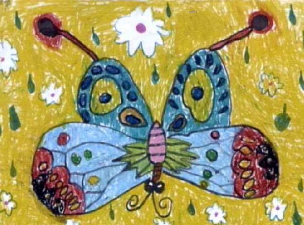 蝴蝶简笔画 蝴蝶图片欣赏 蝴蝶儿童画画作品