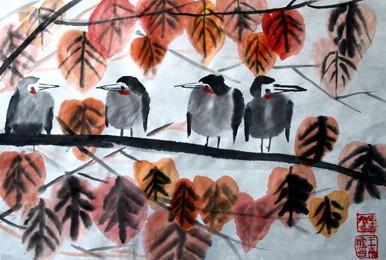树上小鸟简笔画_树上小鸟图片欣赏
