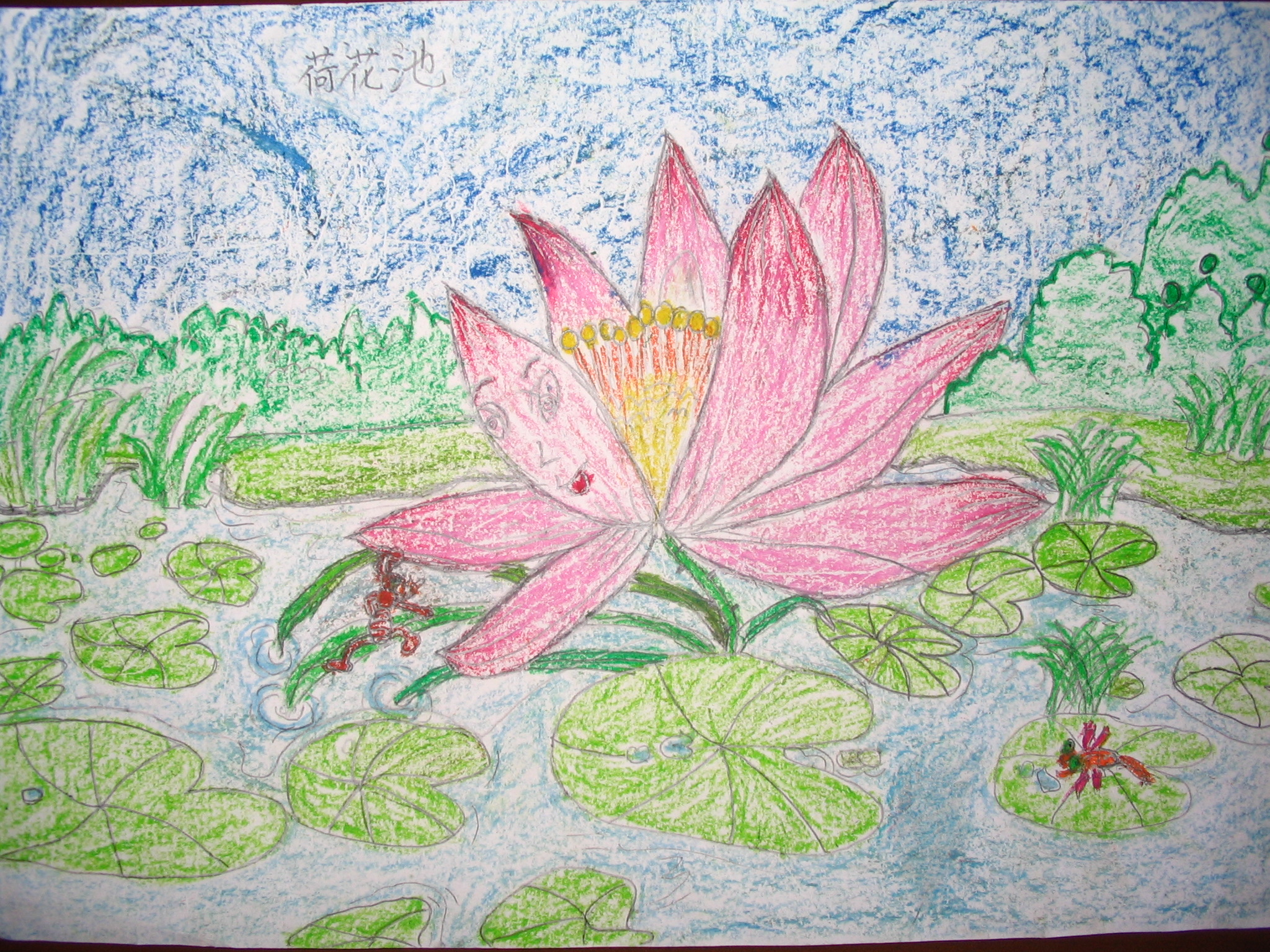 蜡笔画-高尚的莲花