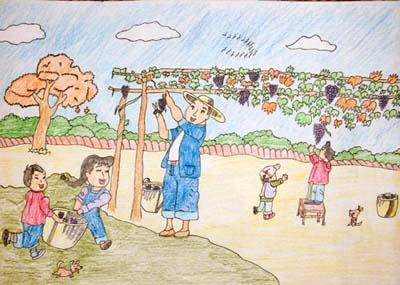 紫色葡萄简笔画_紫色葡萄图片欣赏_紫色葡萄儿童画画