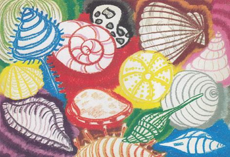 七彩贝壳简笔画_七彩贝壳图片欣赏_七彩贝壳儿童画画作品-有伴网