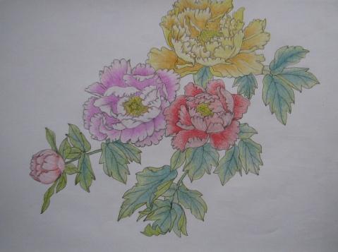 儿童画画 工笔画 国色天香牡丹花儿童画画