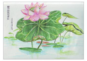 水中莲儿童画画作品