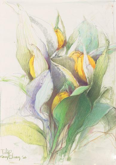 美丽的花朵简笔画 美丽的乡村简笔画 迎春花的花朵简
