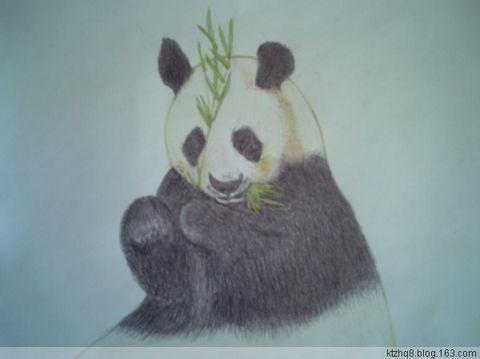 铅笔画-小熊吃竹笋