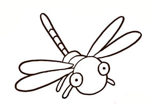 蜻蜓图案简笔画